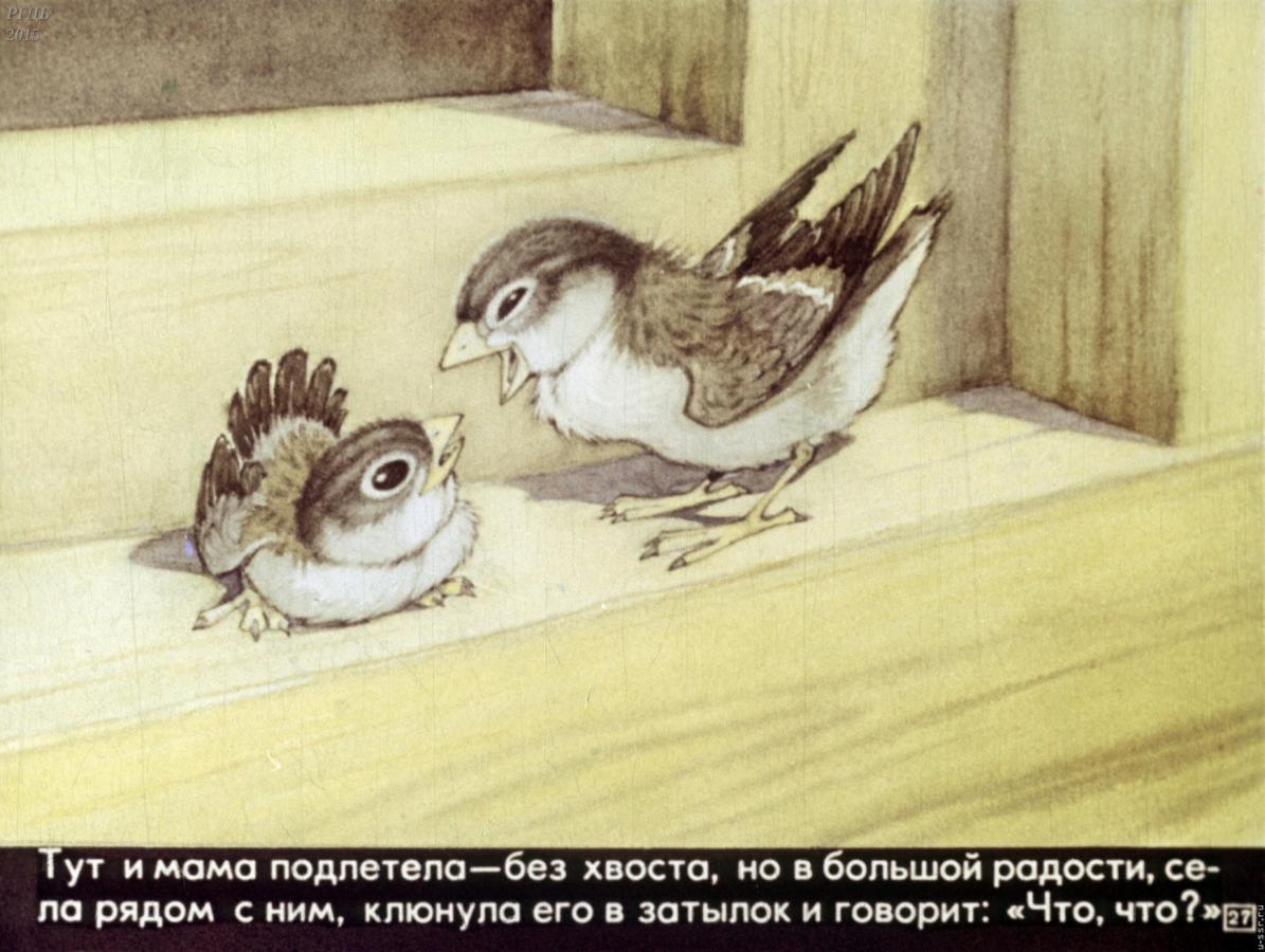 Картинки воробьишко м.горький, красивой